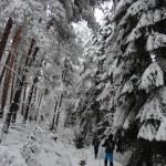 zimna_vitosha_25